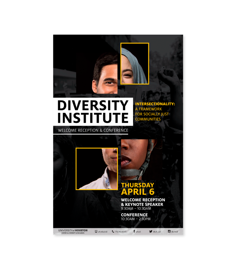 Diversity-Institute-Mockup.png